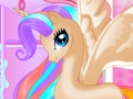 Pony Princess Birthday Party