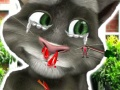 Talking Tom Doctor